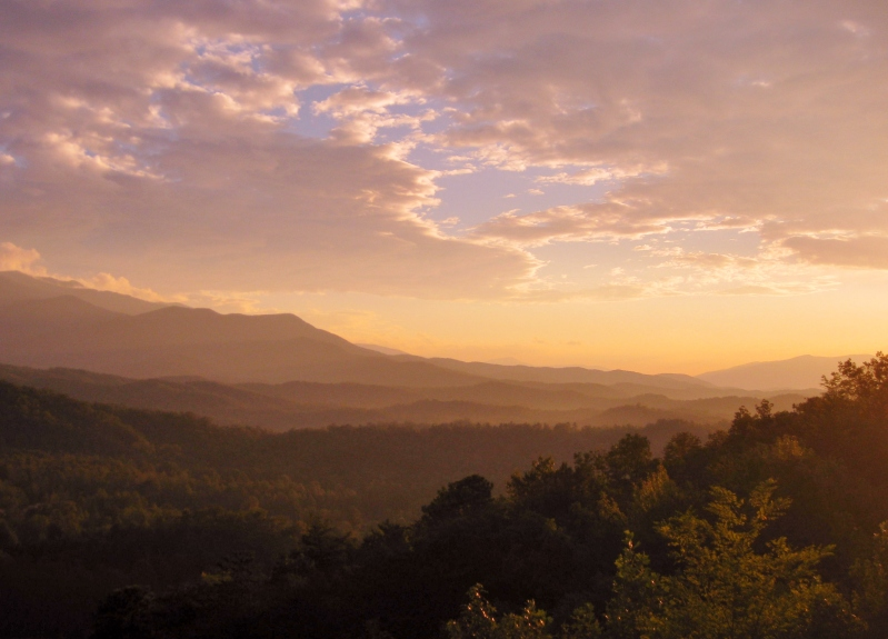 Although it's only 12 miles from downtown Gatlinburg, there isn't a tourist trap in sight at Deer Ridge.