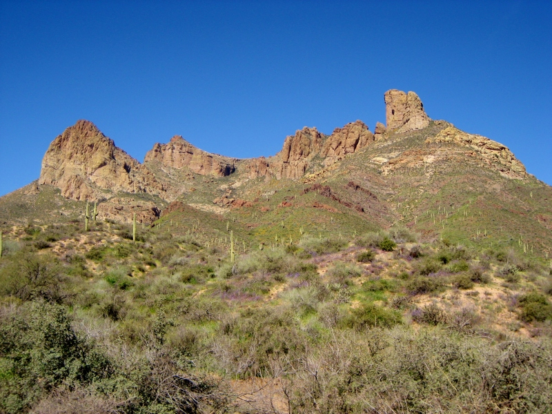 Just past Apache Junction, treat yourself to beautiful desert views of the Superstition Mountains and Tonto National Forest.