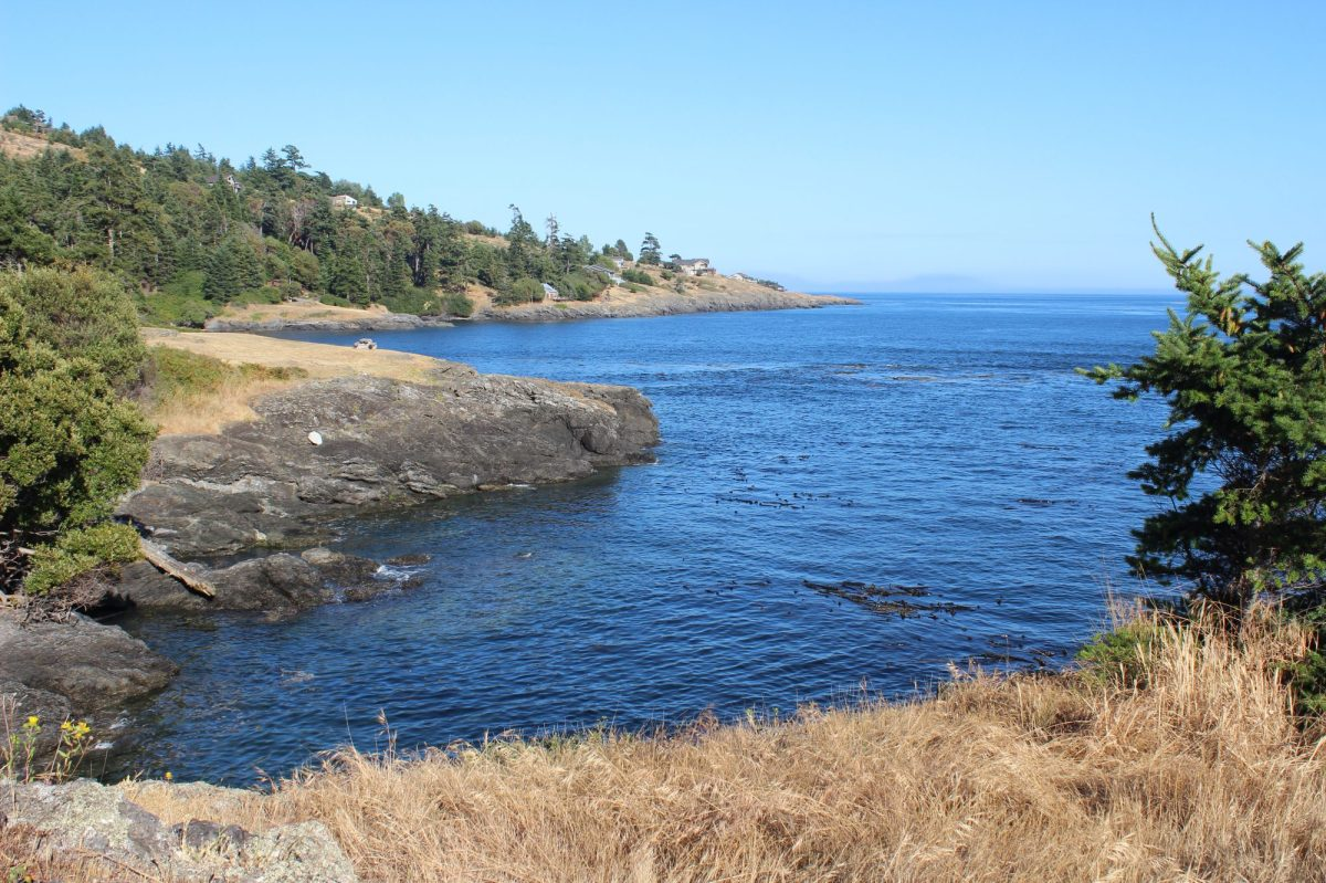 San Juan Island Vacation Rental