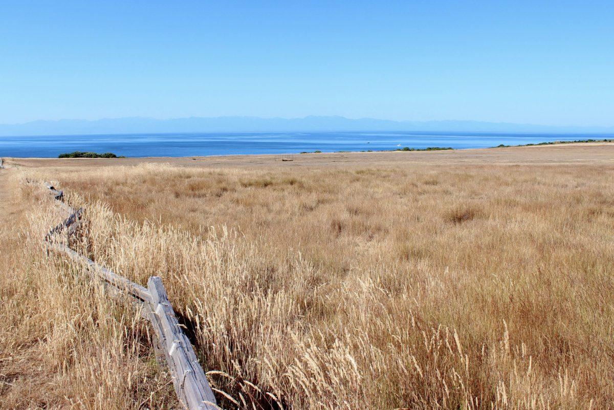 San Juan Island